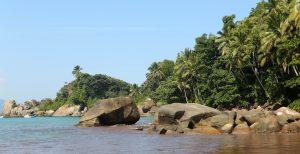 Plage Ilha Grande 2