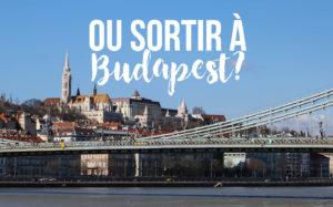 Tu Veux Savoir Ou Sortir A Budapest On Va Taider Promis En Regle Generale Nest Pas Vraiment Des Gros Fetards Tous Les Deux Mais Quand La Fatalite