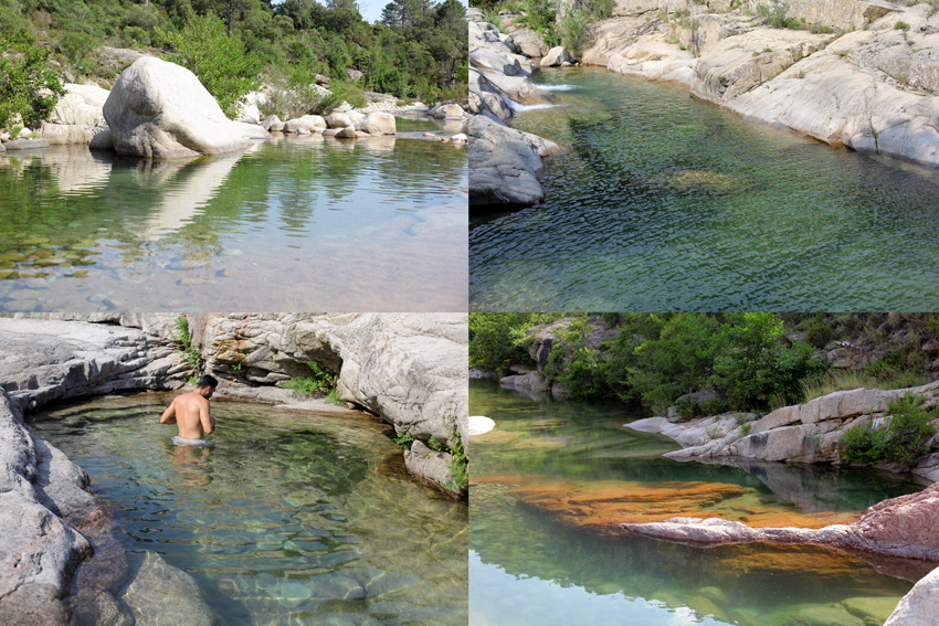 Corse cap sur les piscines naturelles on met les for Piscine naturelle