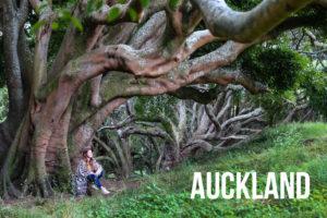 Nouvelle Zélande itinéraire